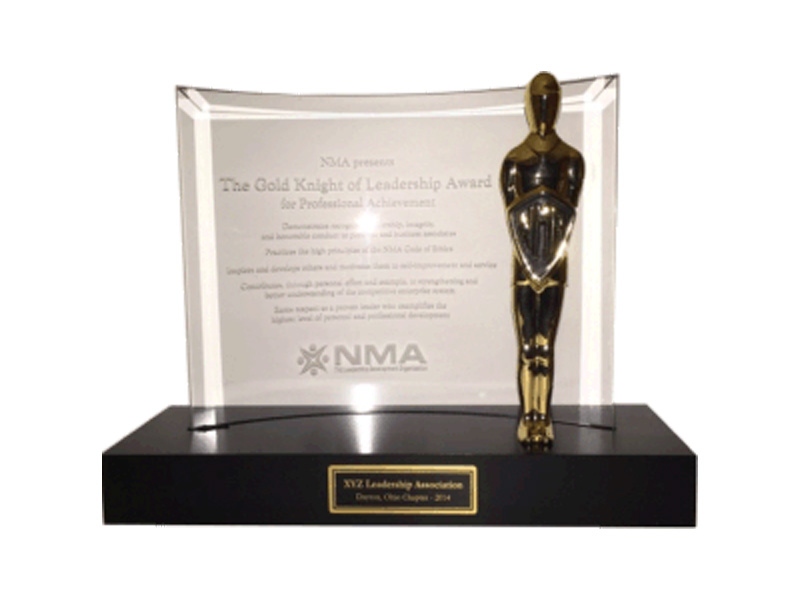NMA_product_award_gold_knight